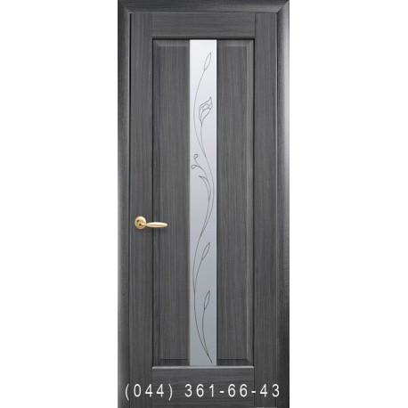 Двери Премьера грей со стеклом (матовое) + рис. Р2
