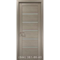 Двери OPTIMA-04 клен серый