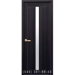 Двери Марти венге dewild со стеклом (сатин матовый)
